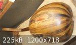 back.jpg - 225kB