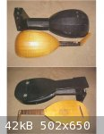 Lute and case reduced.jpg - 42kB