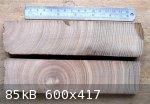 Ash Cut Ends (624 x 434) (600 x 417).jpg - 85kB