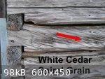 Cedar Spiral 2 (600 x 450).jpg - 98kB